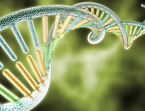 The APOE Genetics of Alzheimer's Disease